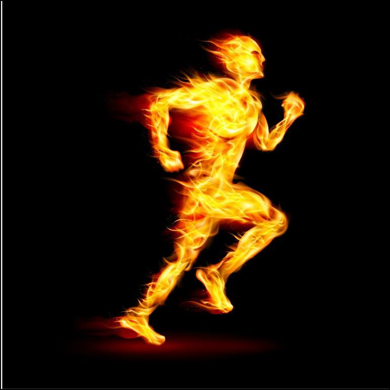 耐久レースで必要な高いパフォーマンスを維持するエネルギー補給と食事