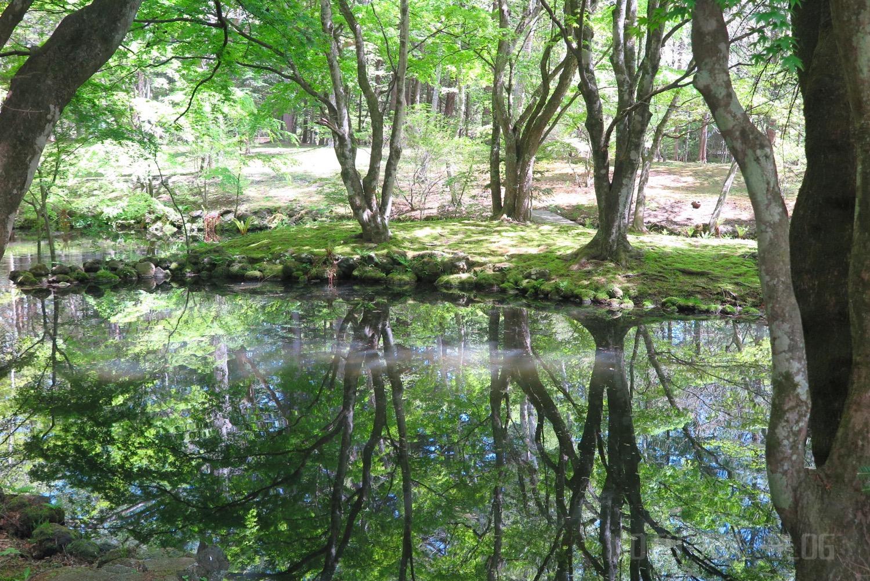 軽井沢の雲場池