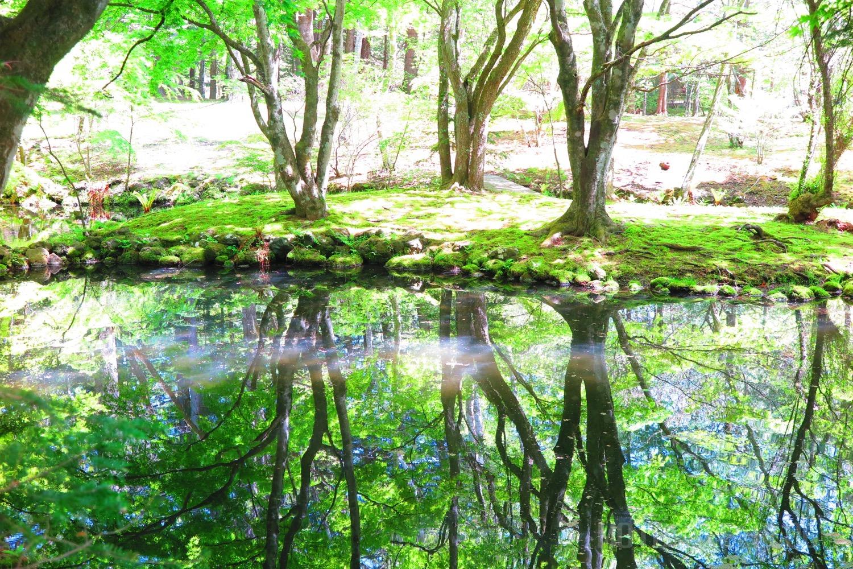 名古屋⇒軽井沢へ1泊2日の旅行へ行った時の食事とアクティビティなど遊び方まとめ