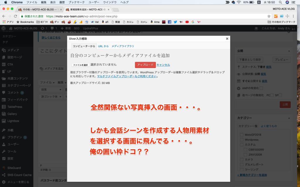 Wordpress-DIVERの囲い枠